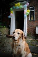 Divya's birthday party in London
